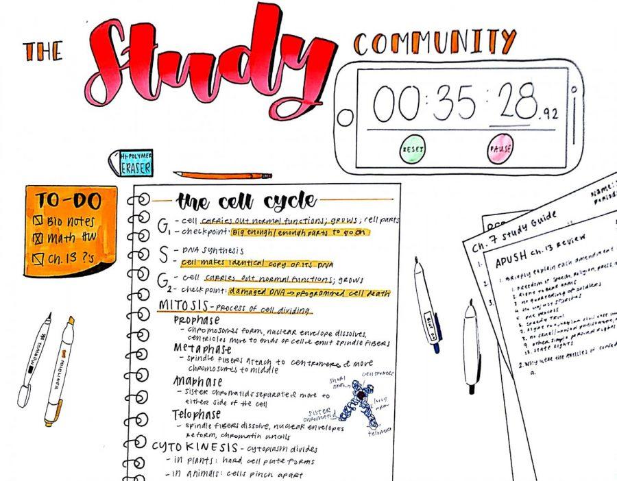 The Study Community