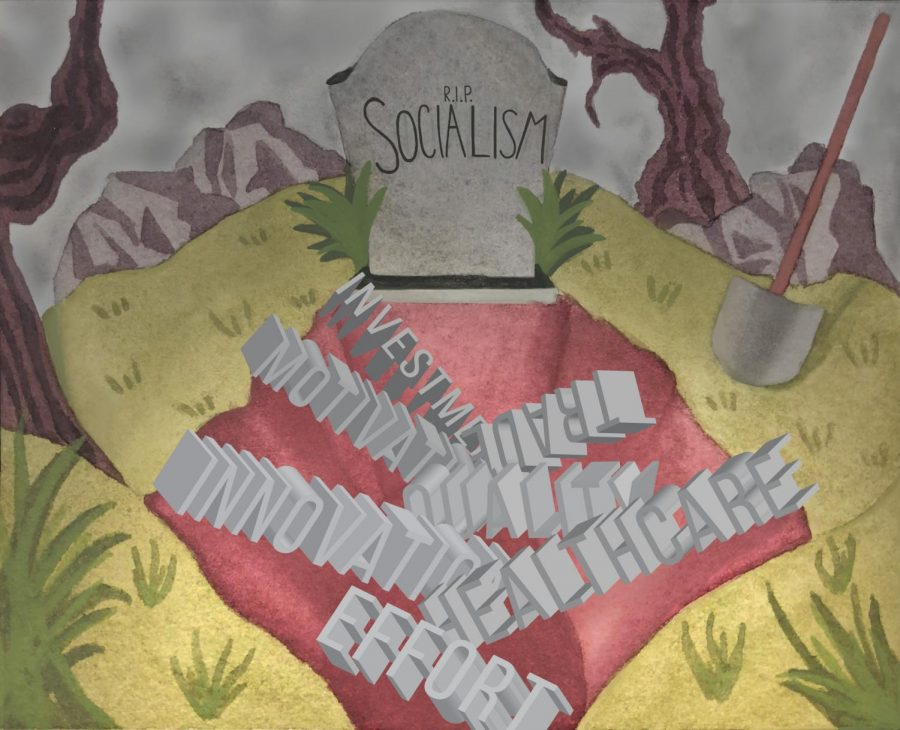 The Flaws of Socialism