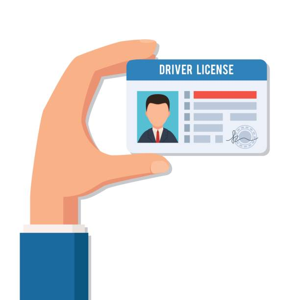 Hand holds a driver license. Indification card photo ID. Vector illustration in flat style isolated on white background