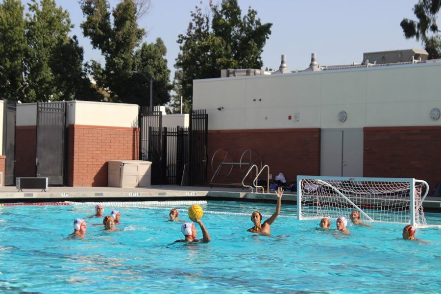 Boys Varsity Water Polo v. Burroughs Oct. 10