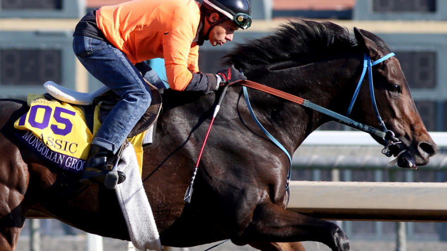 Amidst Breeders' Cup, 37th Horse Dies At Santa Anita Race Track
