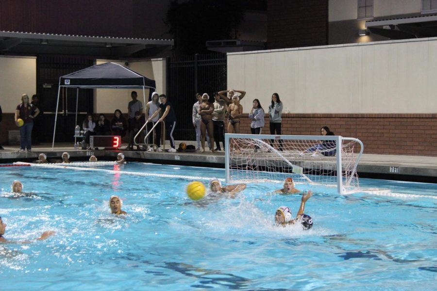 Water Polo Feature