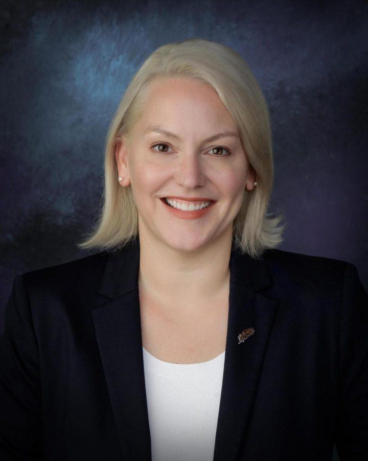 Ms. Dillmans Sexual Assault and AHS Interview Transcript