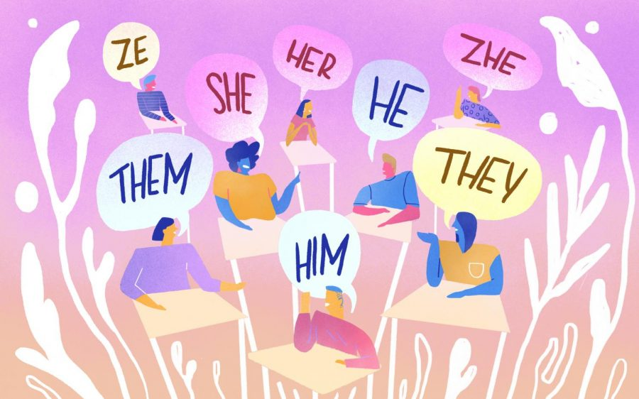 The Power of Gender Pronouns