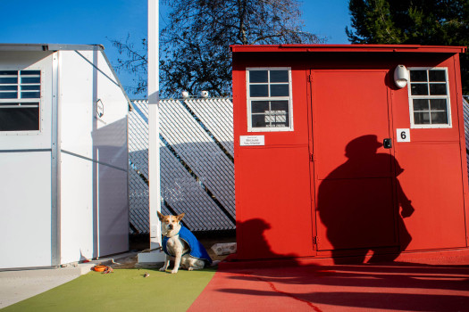 Arcadia's Tiny Shelter Project for Homeless